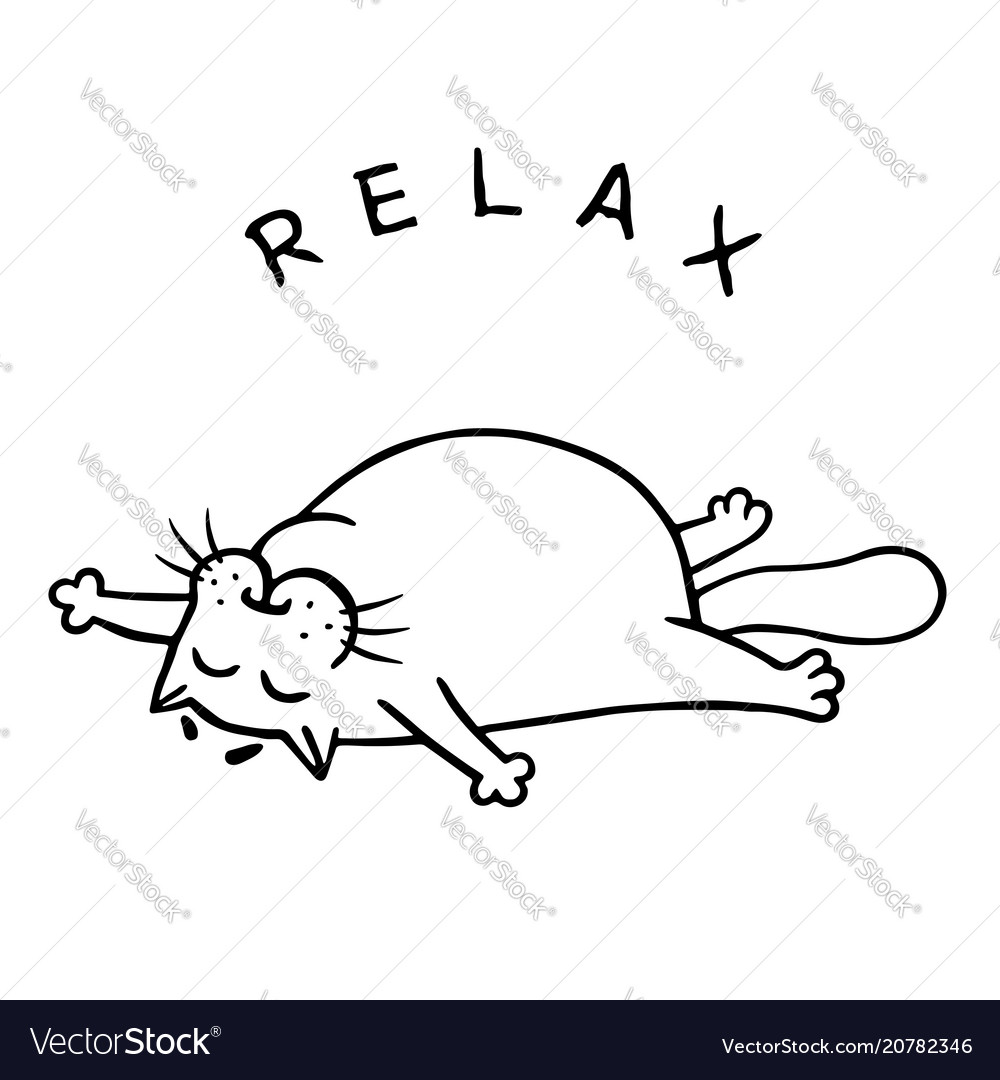 Fat cat is lying down and relax isolated