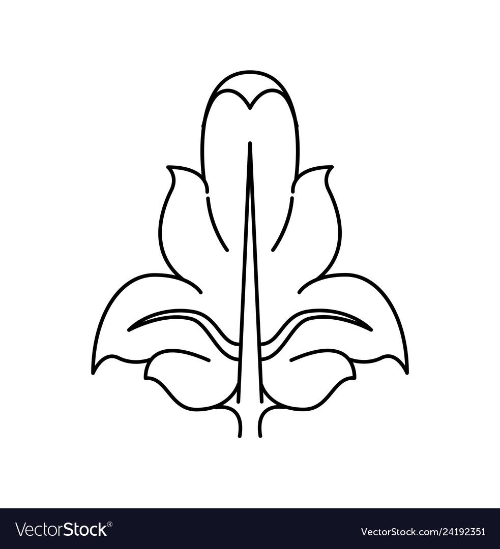 A fleur de lis heraldic coat arms