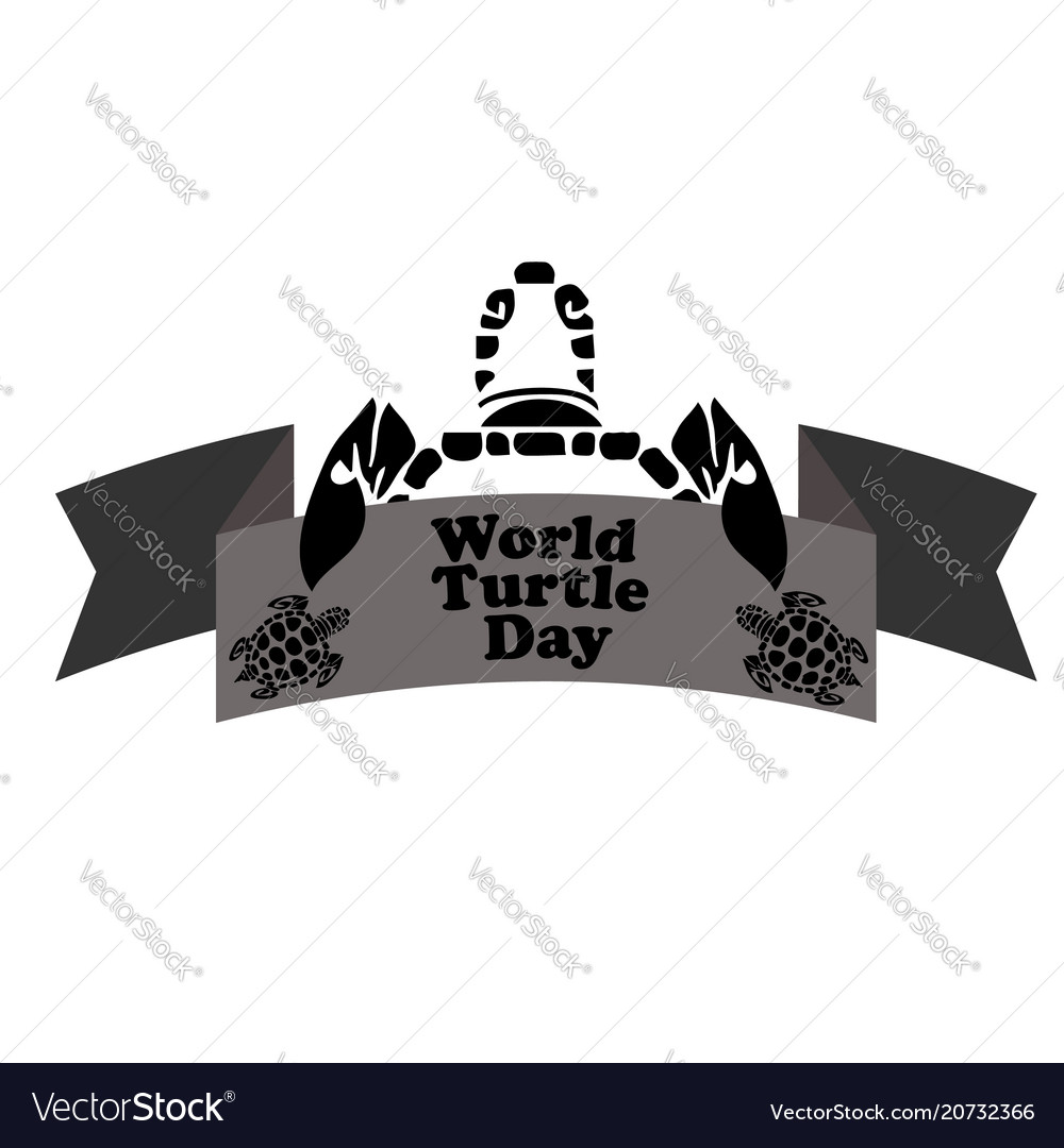 Concept on the world turtles day may 23
