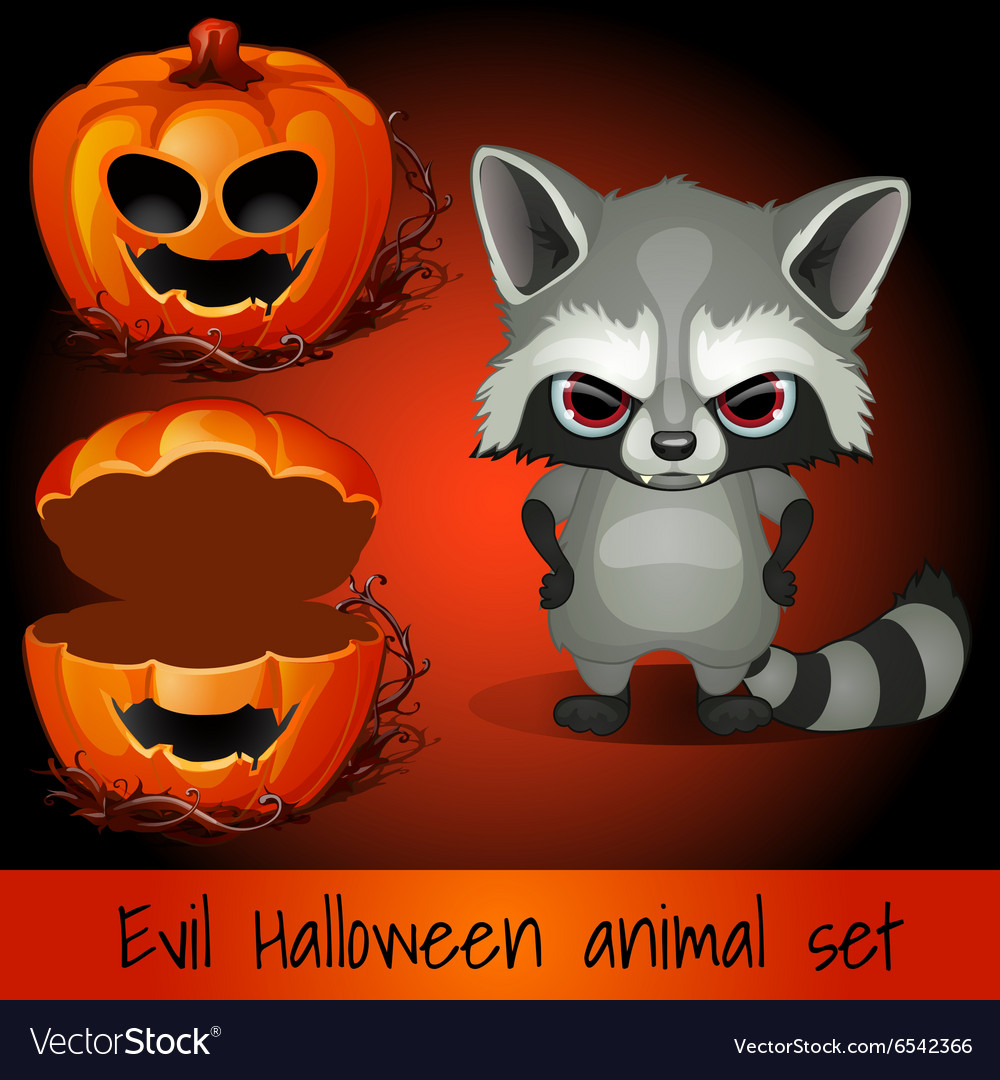 Open pumpkin and evil raccoon on a red background