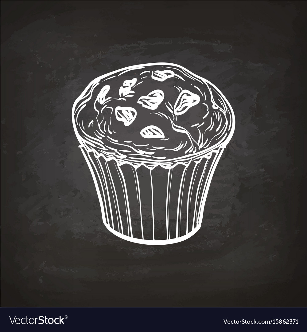 Muffin sketch on chalkboard vector image