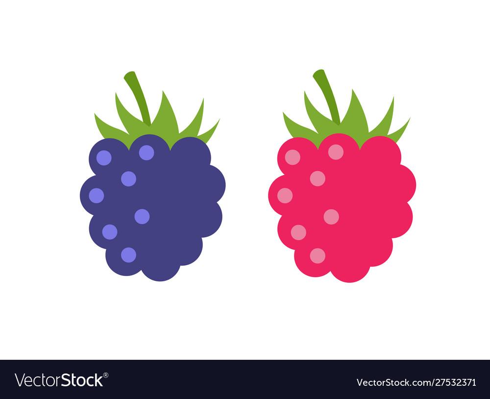 Raspberry icon flat berry