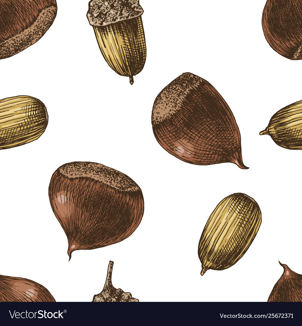 Seamless pattern with hand drawn chestnuts and