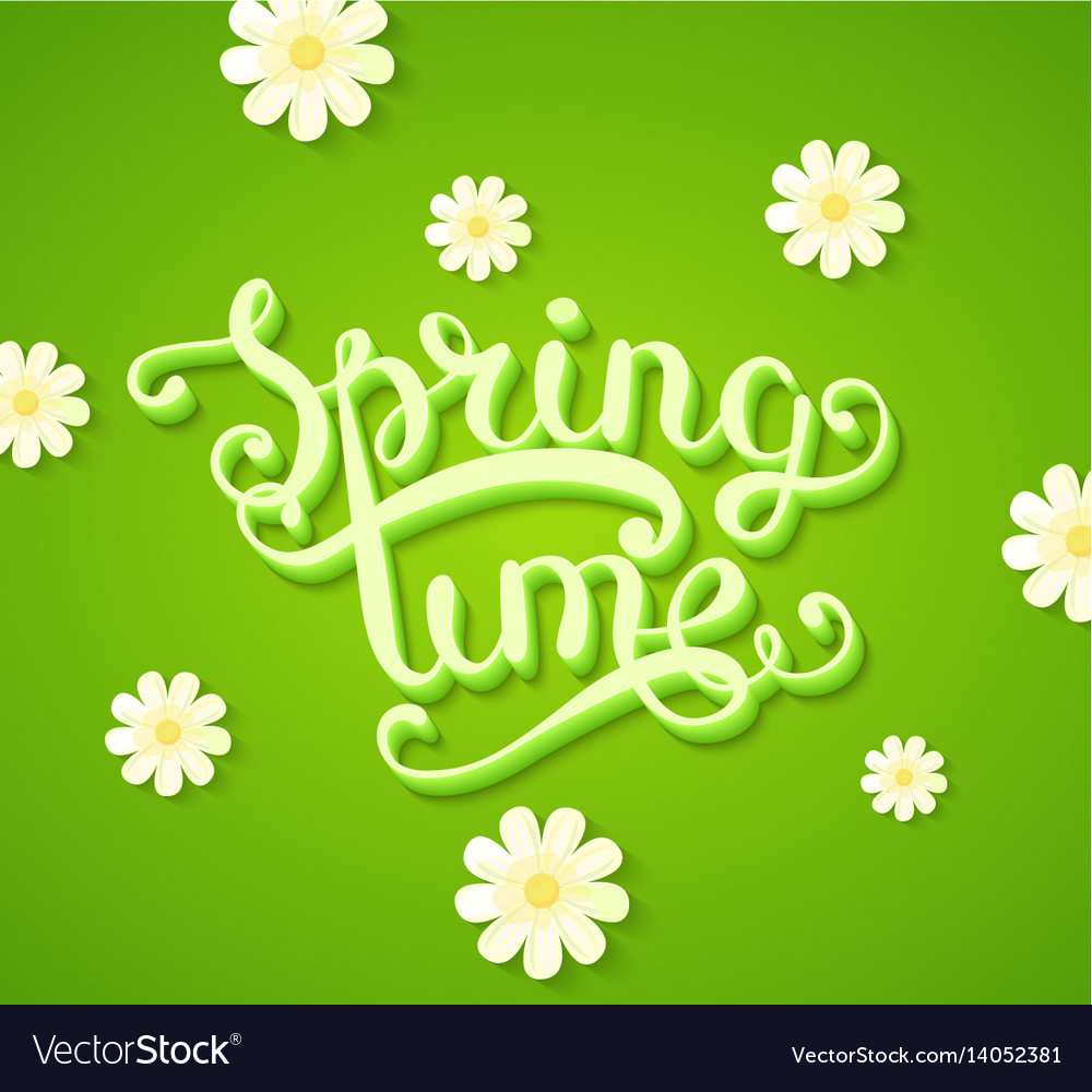 Spring time concept with flowers vector image