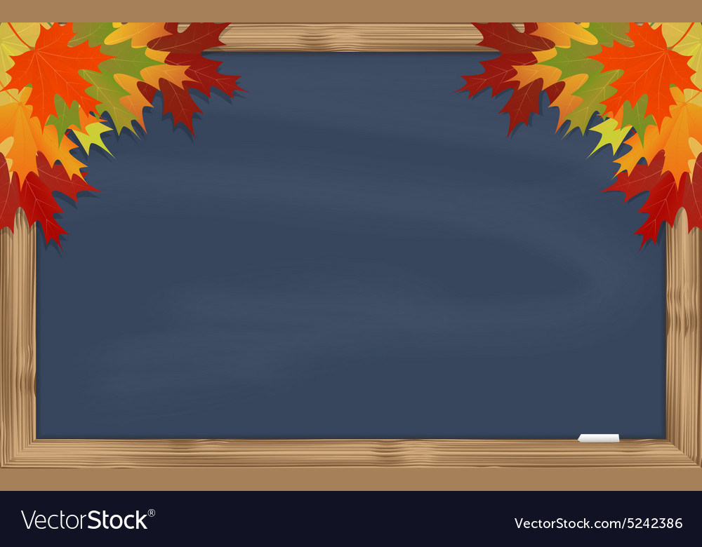 Maple leaves on grey chalkboard vector image