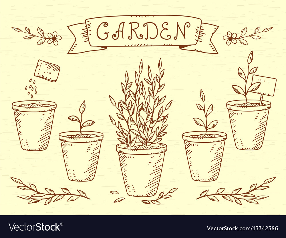 Set of plant in pots vector image