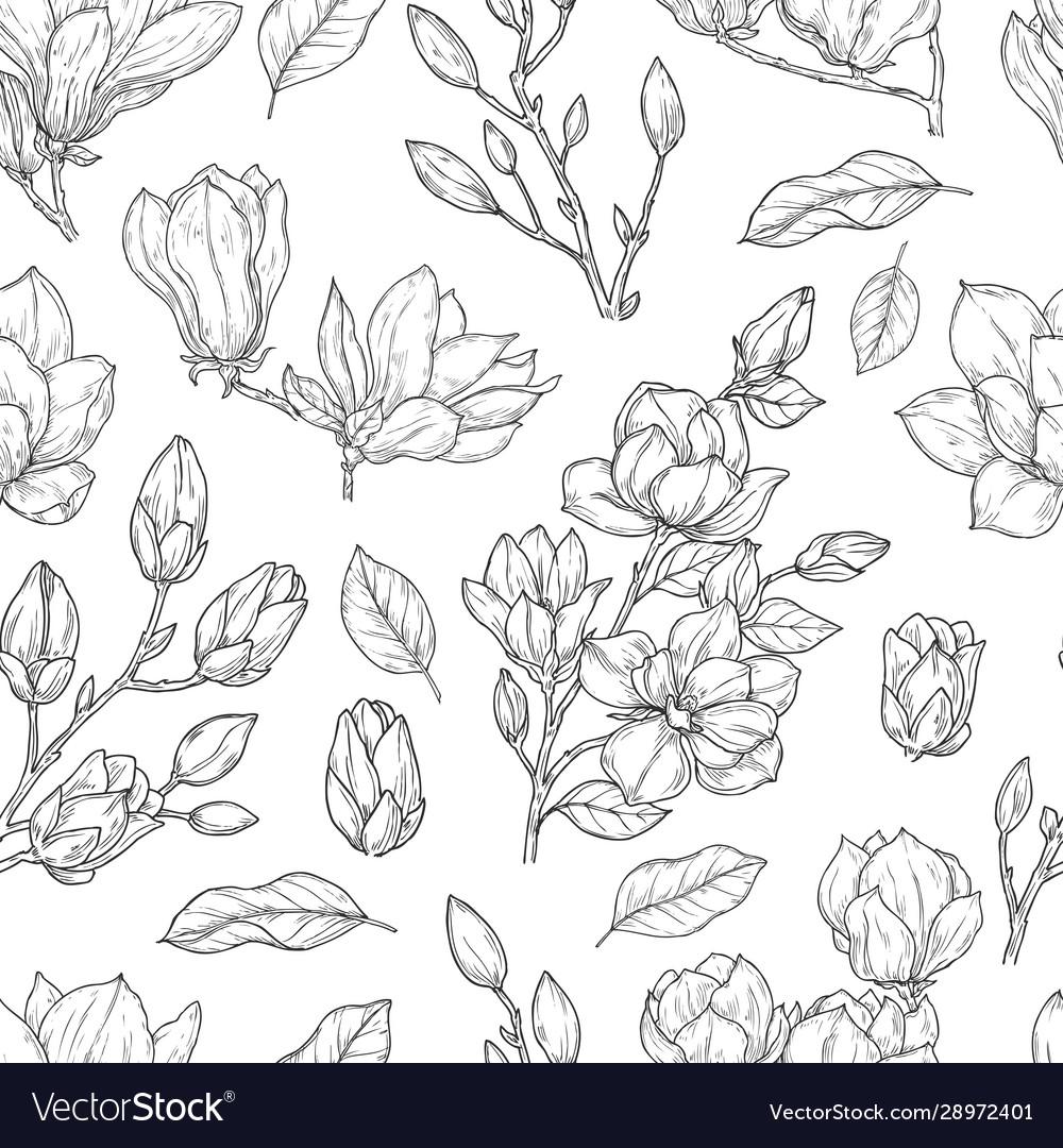 Magnolia pattern sketch flower ornate seamless