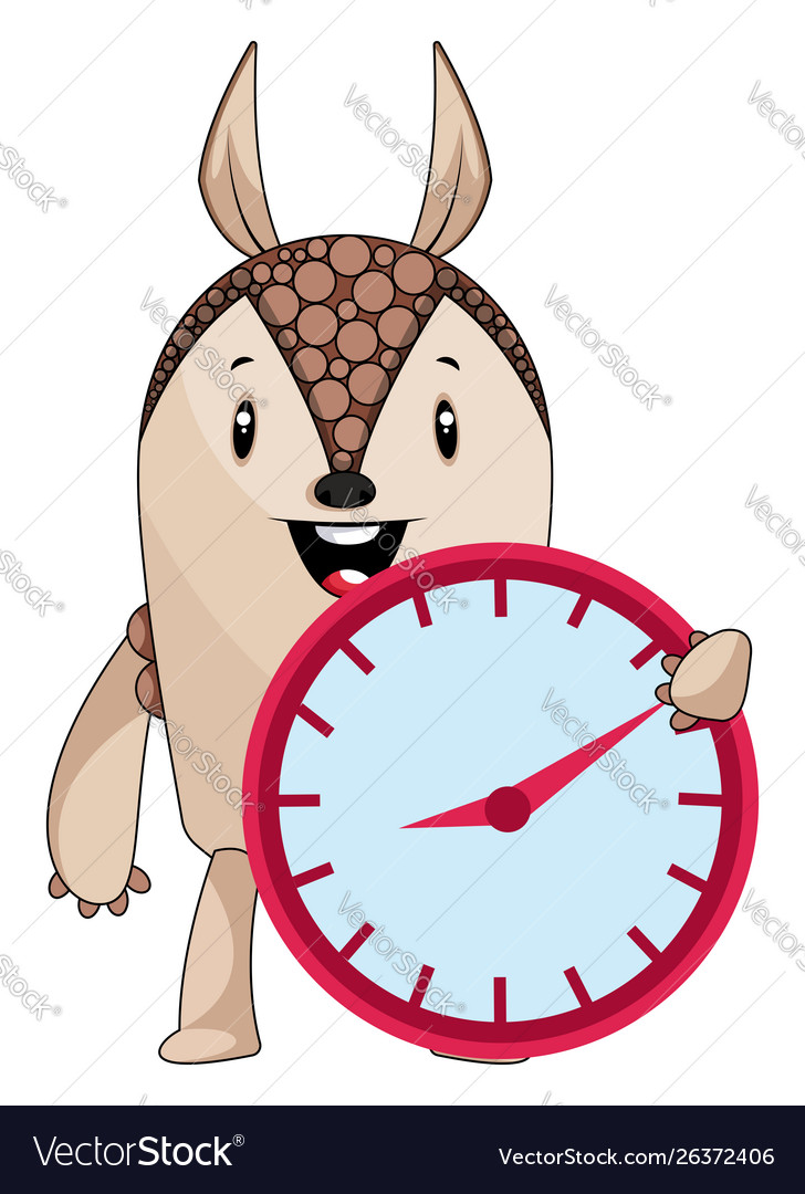 Armadillo with clock on white background