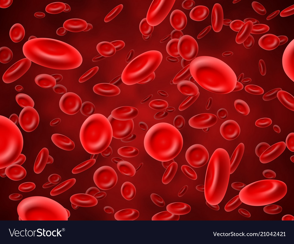 Red blood cells medical hematology