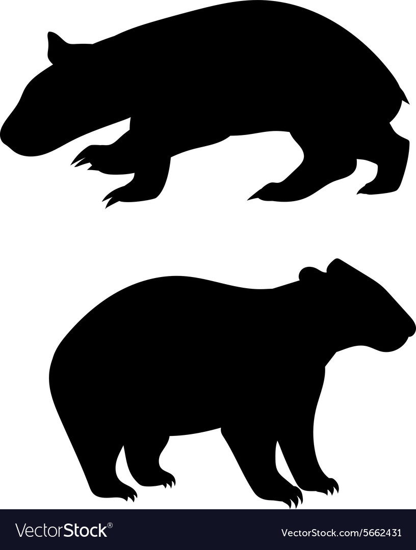 Wombat silhouettes