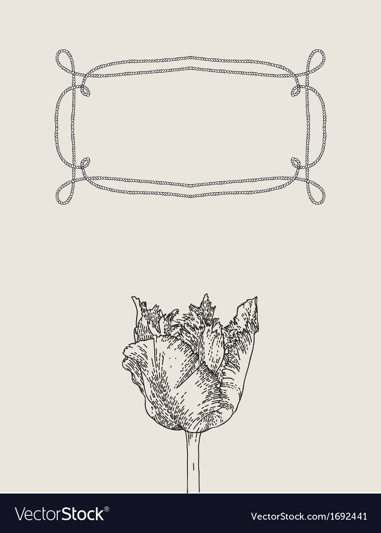 Ornamental tulip flower with rope frame