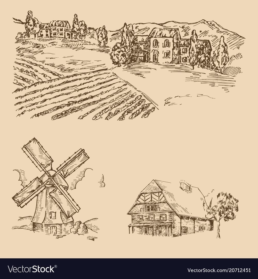 Rural landscape hand drawn vineyard farm house
