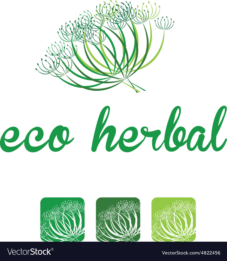 Floral elements herbal silhouette vector image
