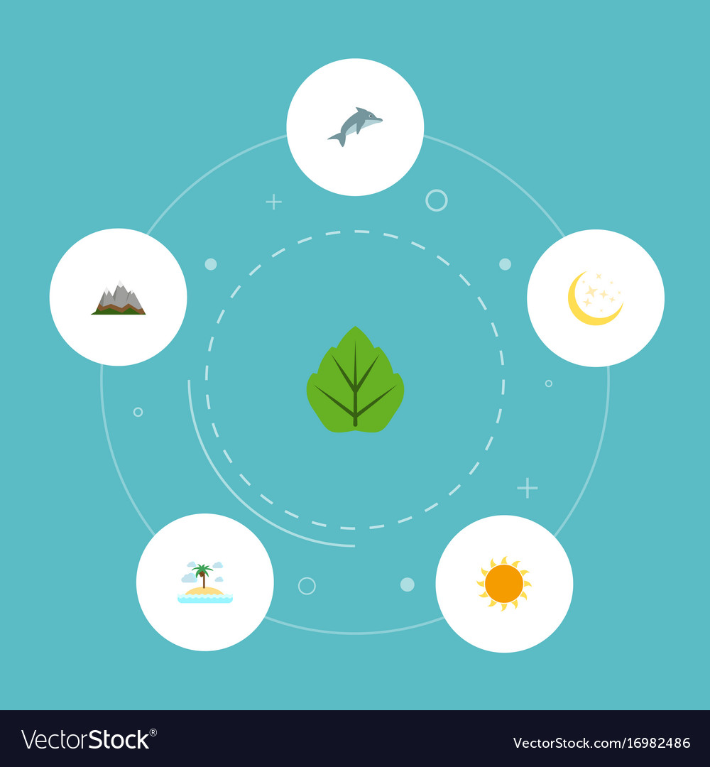 Flat icons playful fish landscape night vector image