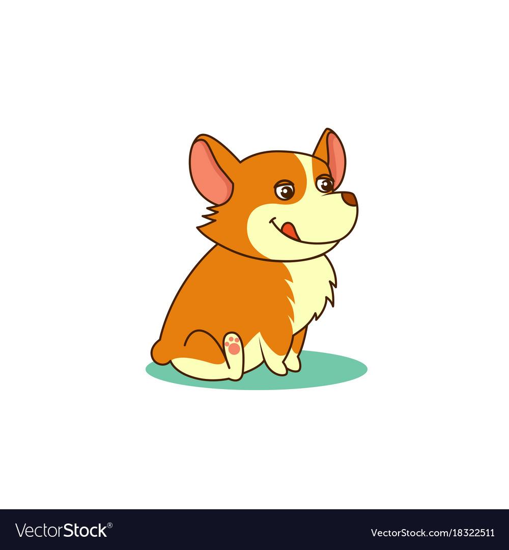 Cute dog of welsh corgi of