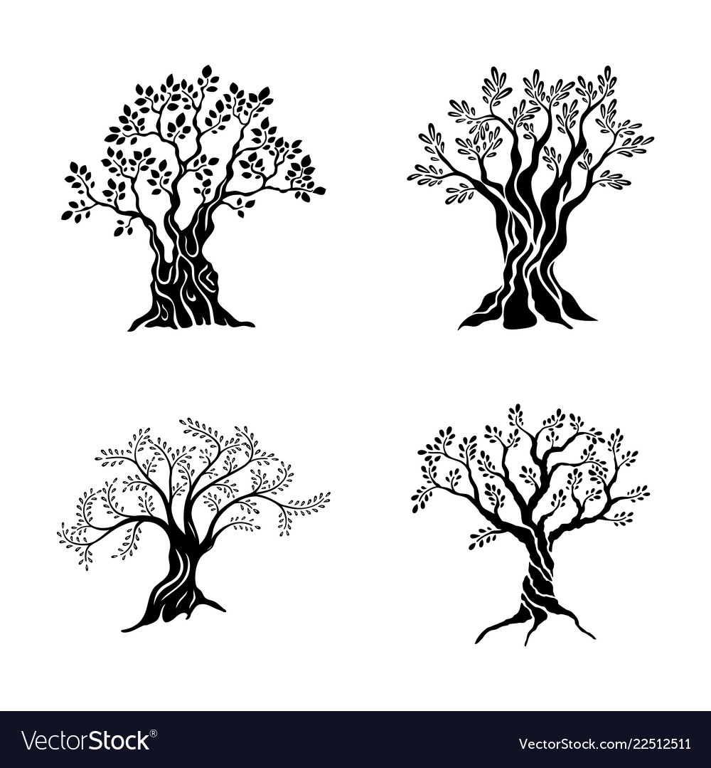 Olive trees silhouette icon set isolated on white
