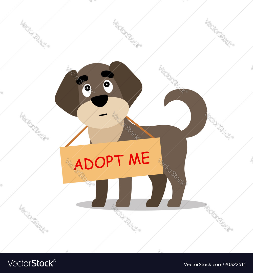 Standing dog with a poster adopt me dont buy