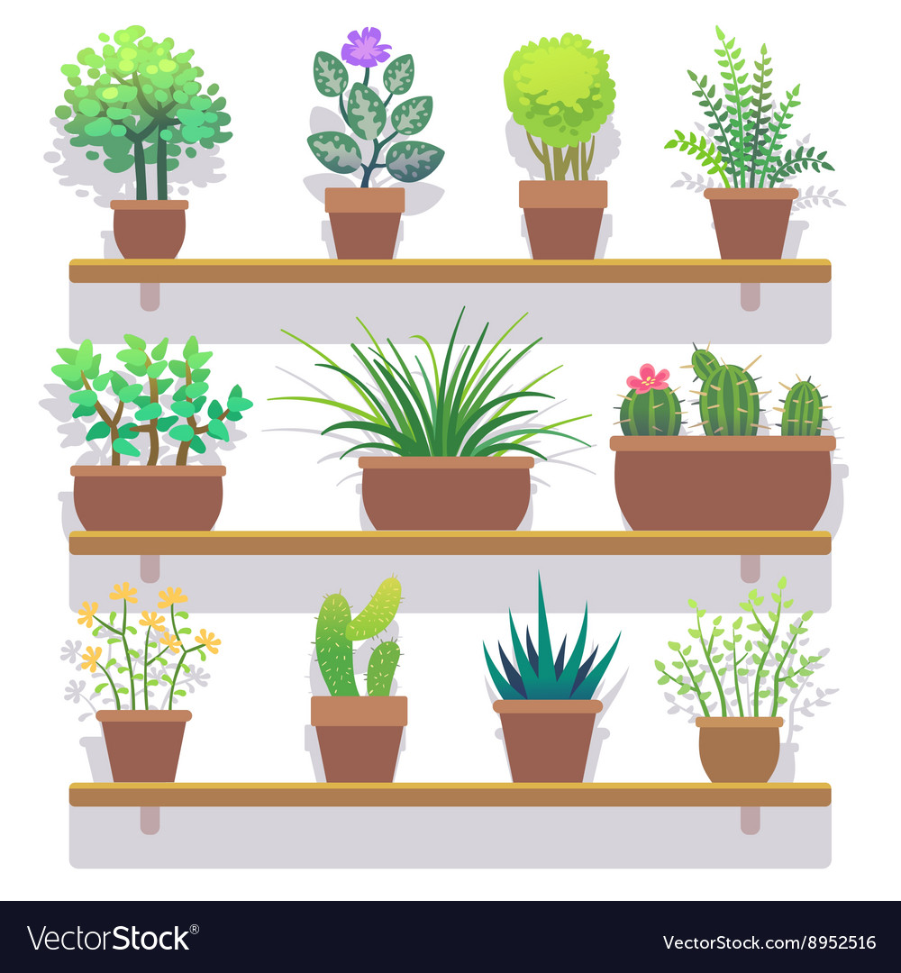 Indoor plants in pots flat icons set