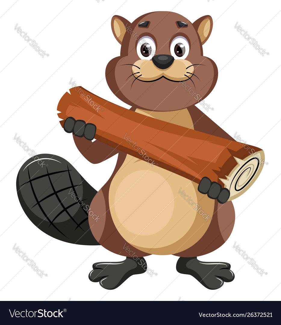Beaver holding log on white background