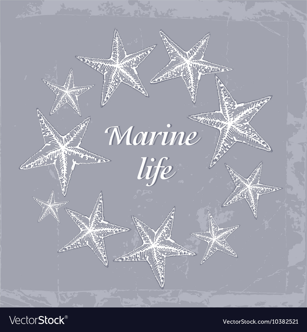 Gentle Decorative sea card with starfishes in vector image