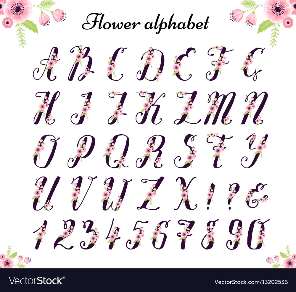 Colorful flower font nature colorful summer