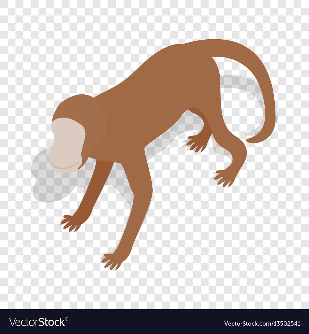 Monkey isometric icon