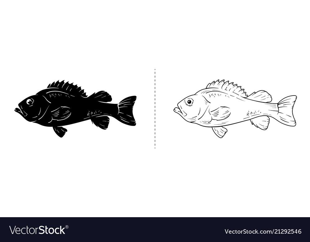 Fish silhouette sea animal