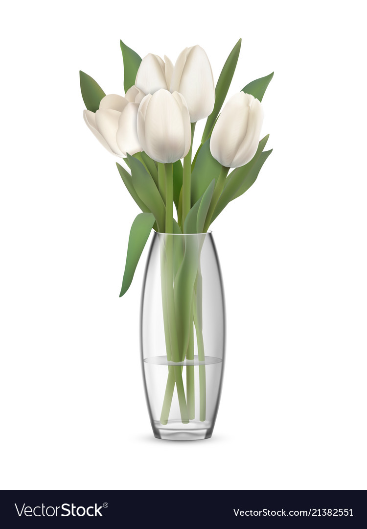 Bouquet of white tulips in glass vase