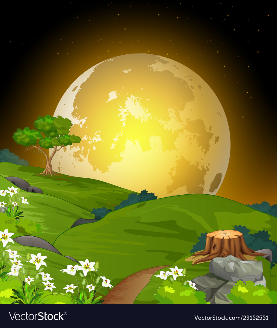 Cool Landscape Grass Field View With Moonlight Vector Image