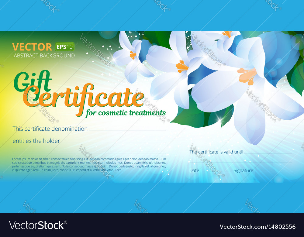 Gift certificate or voucher template for cosmetics vector image