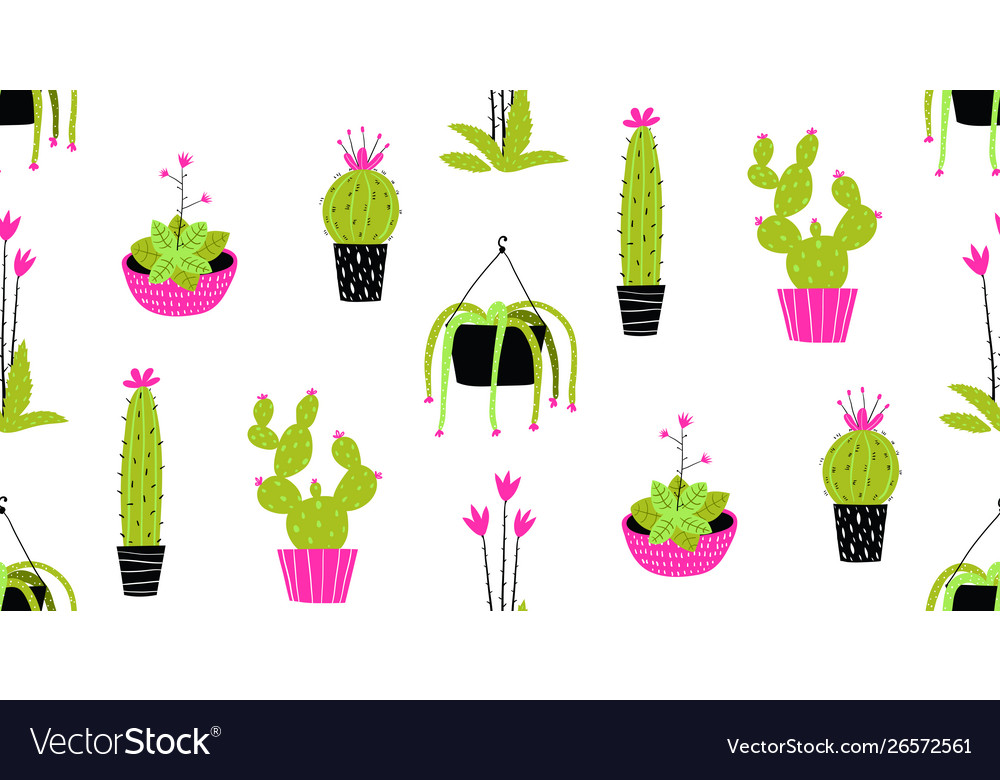 Cactus and succulent in pots seamless pattern