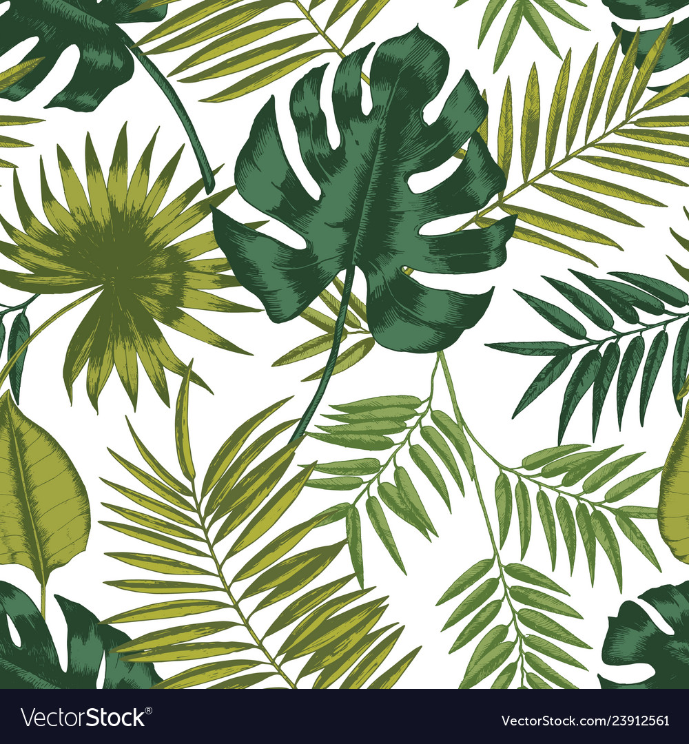 Elegant seamless pattern with leaves tropical