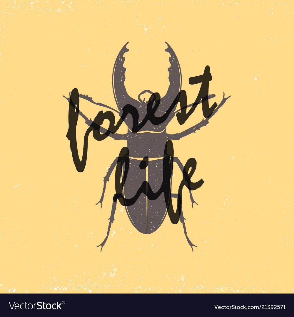 A vintage brown deer beetle emblem on a yellow