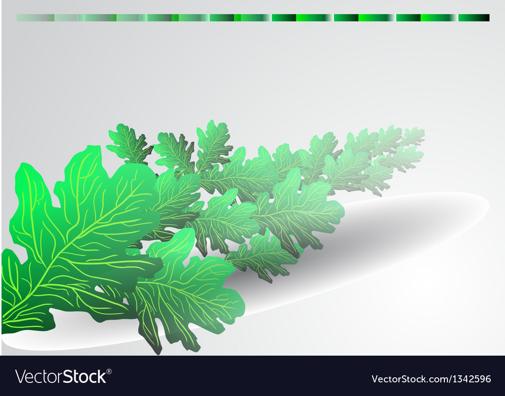 Background with green oak leaves vector image
