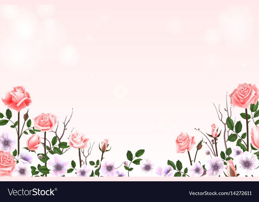 Greeting card with roses delicate buds flowers vector image