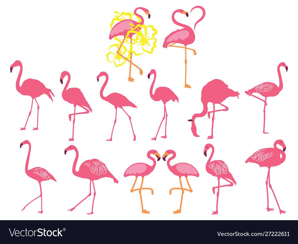 Set pink flamingos collection cartoon