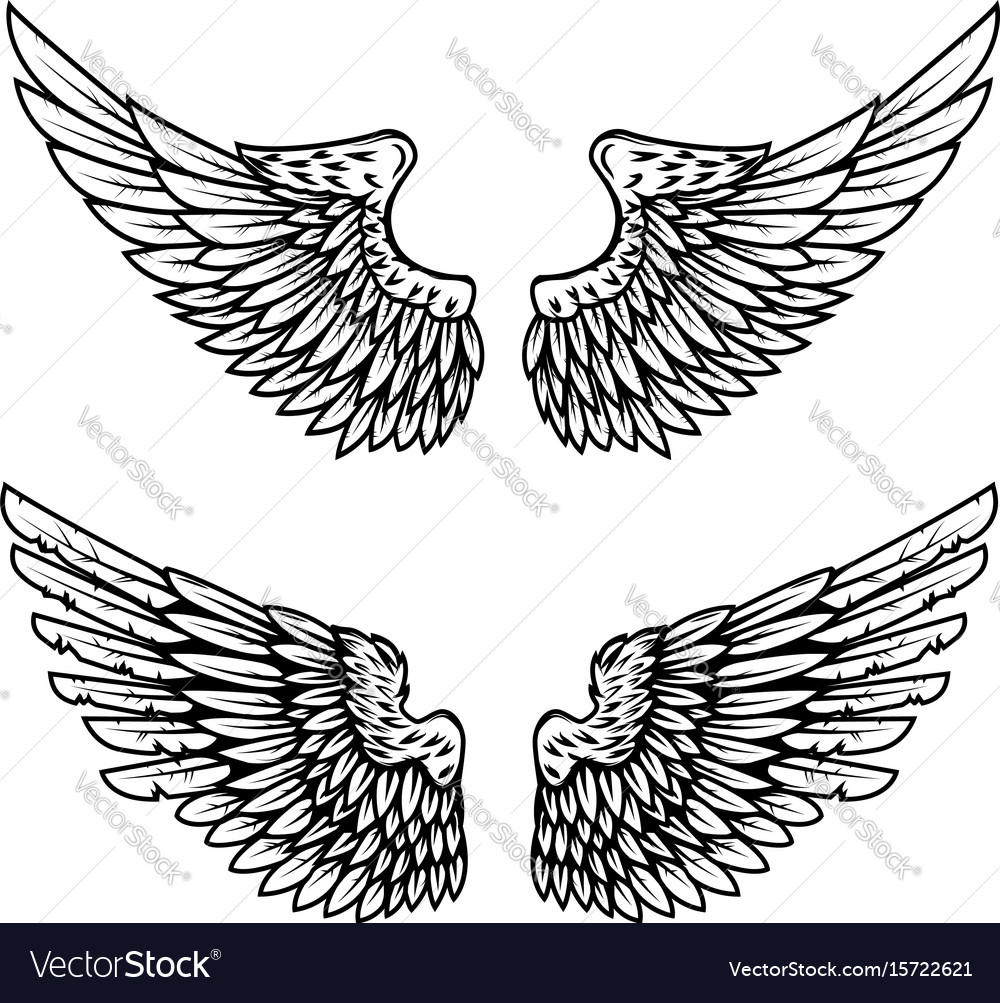 Set of the eagle wings isolated on white