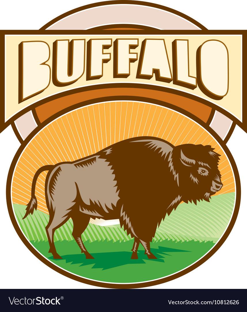 American Bison Buffalo Oval Woodcut vector image