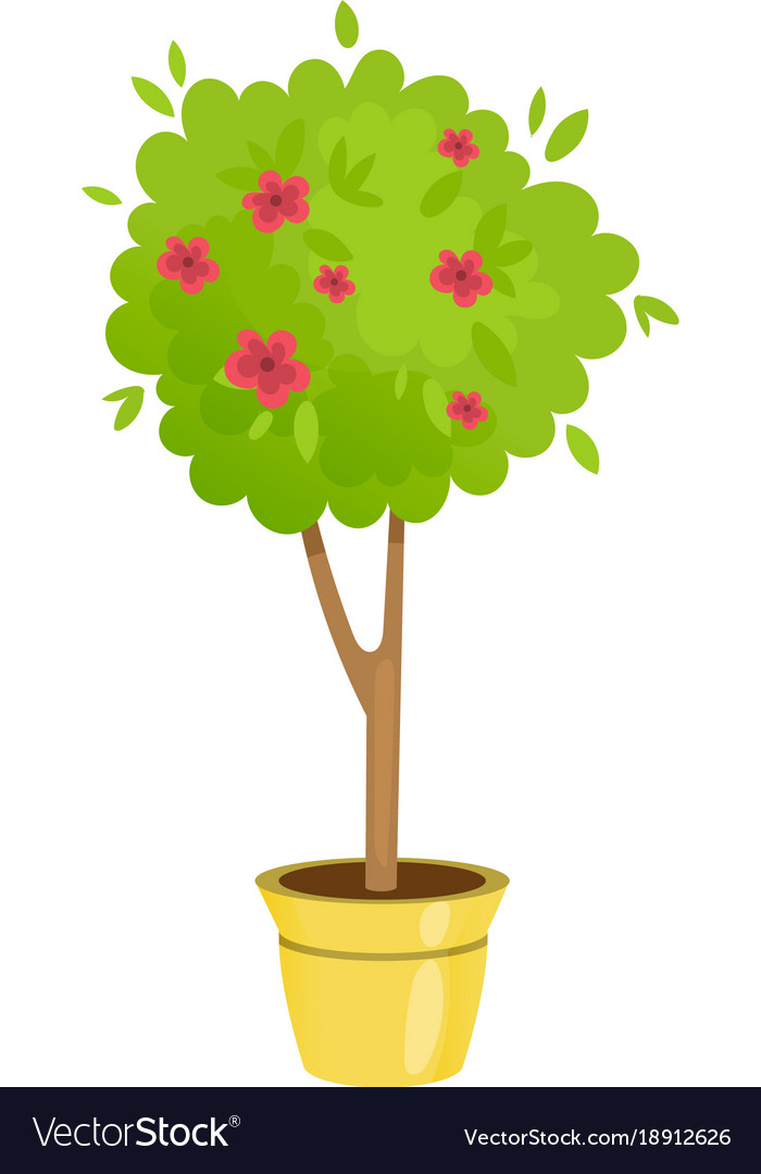 Lush gardening tree in a pot with flowers