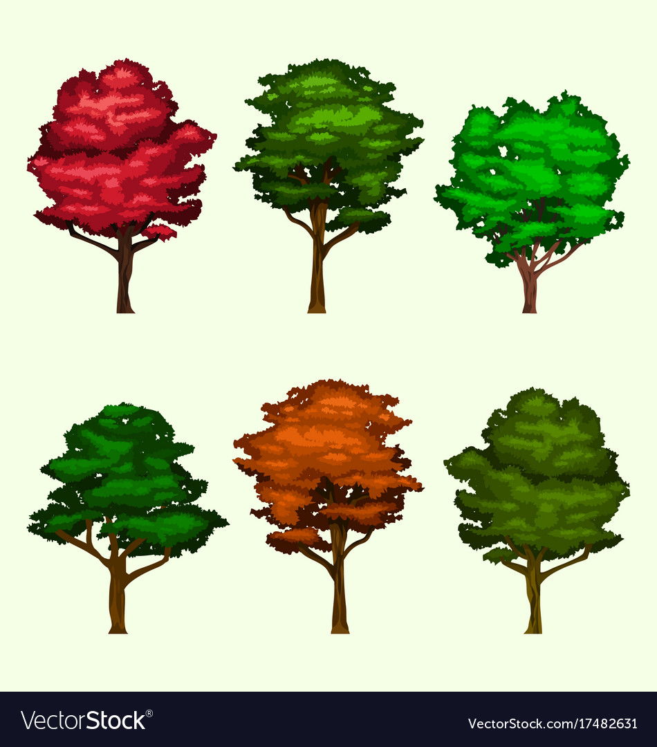 Isolated realistic tree collection set vector image