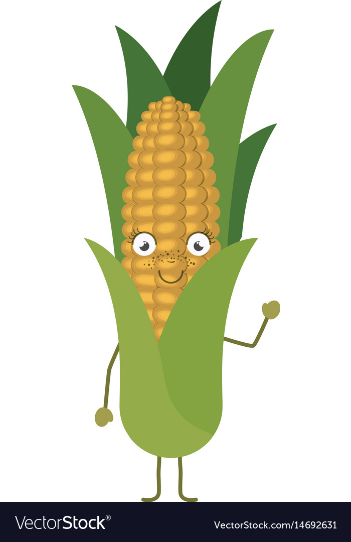White background with cartoon of corncob with