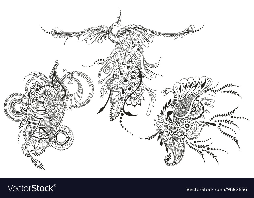 Bird Phoenix three Peacocks for tattoo template vector image