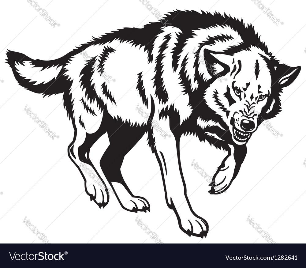 Canis lupus black white vector image