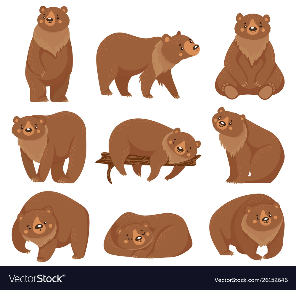 Cartoon brown bear grizzly bears wild nature