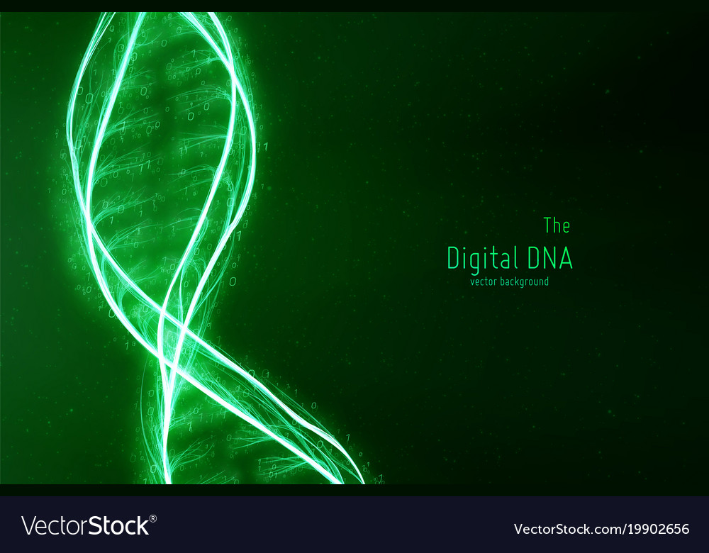 abstract dna double helix royalty free vector image