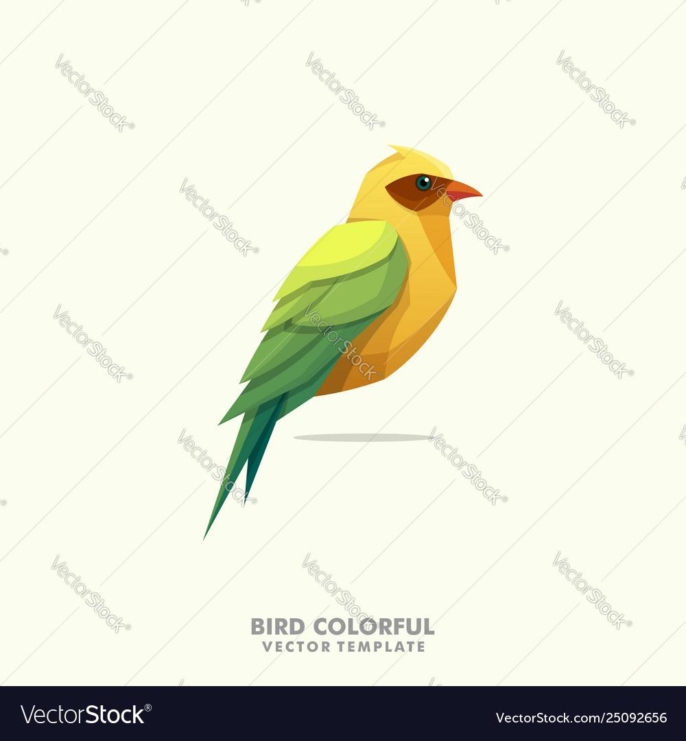 Bird colorful design template