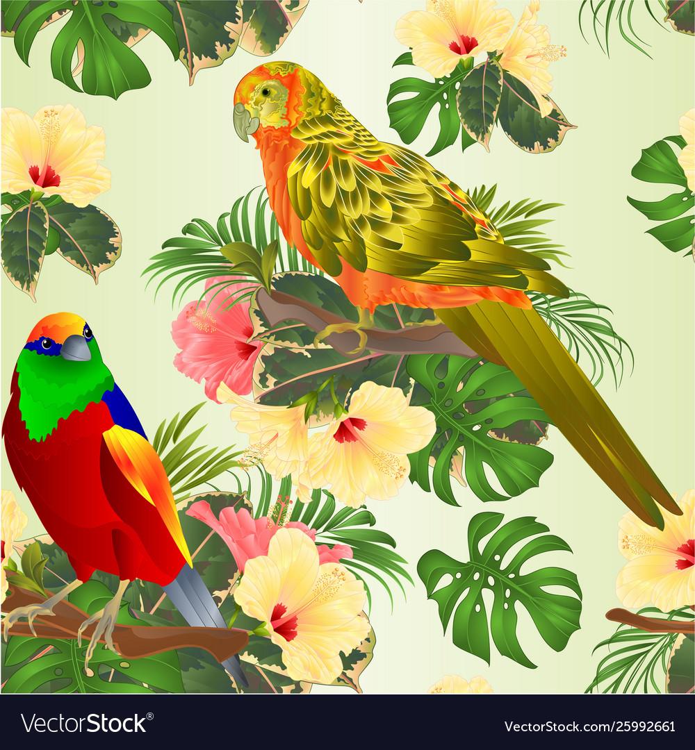 Seamless texture tropical bird and sun conure