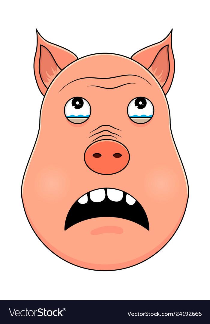 Head of pig in cartoon style kawaii animal