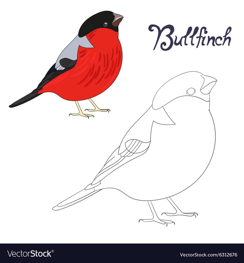 Educational Game Coloring Book Bird Royalty Free Vector