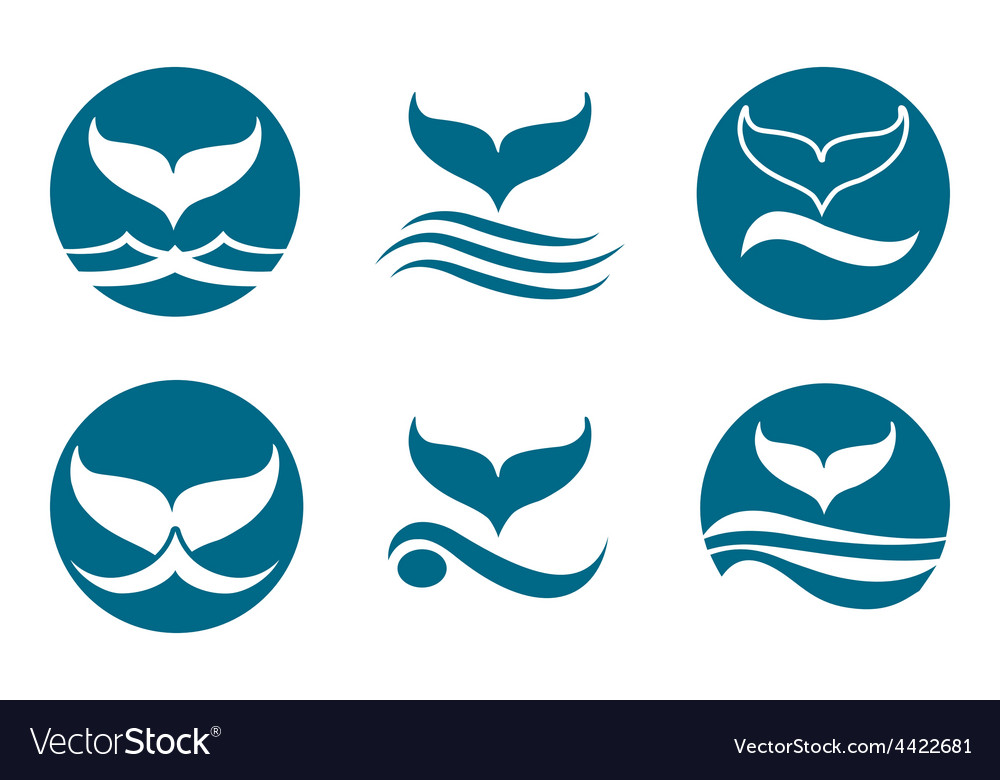 Whale Tail Logo vector image